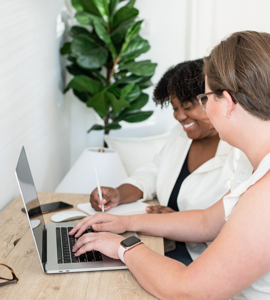 Female consultant working with a client at her laptop.